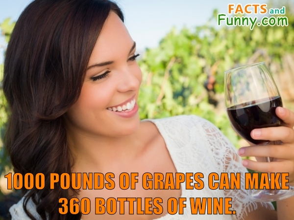 Photo about grapes and wine